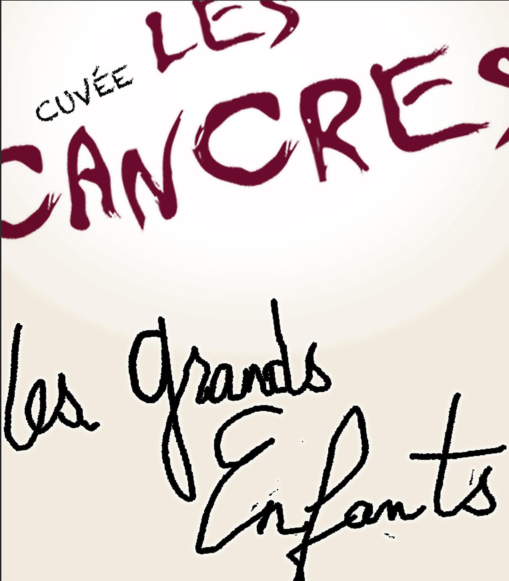 Les Grands Enfants - vin naturel Vallée du Rhône - Cuvée les cancres